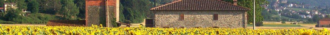 在托斯卡纳乡村及周边浏览体验产品